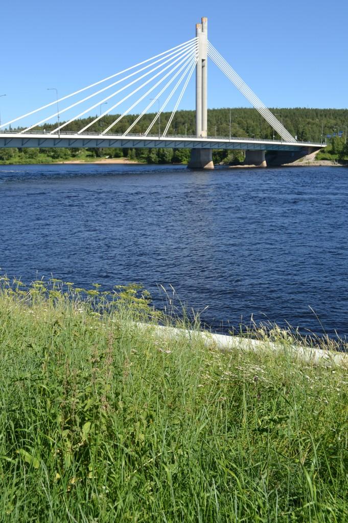 Otan Rovaniemestä tismalleen nämä samat valokuvat kolme kertaa vuodessa ja joka kerta vuodenaikojen vaihtuessa olen yhtä lumoutunut.