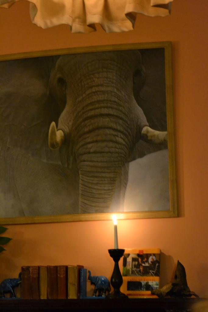 The Elephant House -kahvilassa J.K.Rowling kirjoitti ensimmäiset Harry Potter -kirjansa. Me suomalaiskirjailijat istuimme iltaa ja haaveilimme. Seita tavoitti kansainvälisen yleisön.